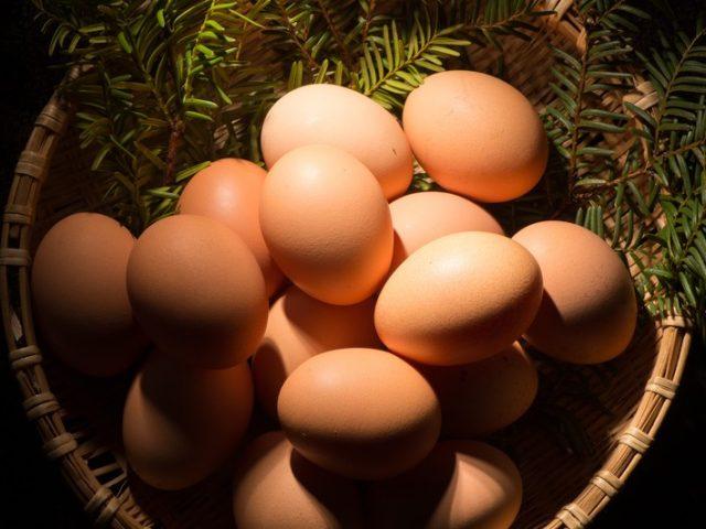 卵を一つのカゴ